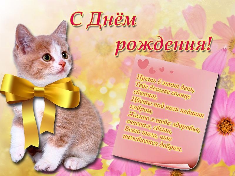 Поздравления с днем рождения от кошечки