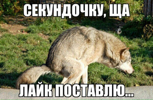 Px_OyqsYeyk.jpg